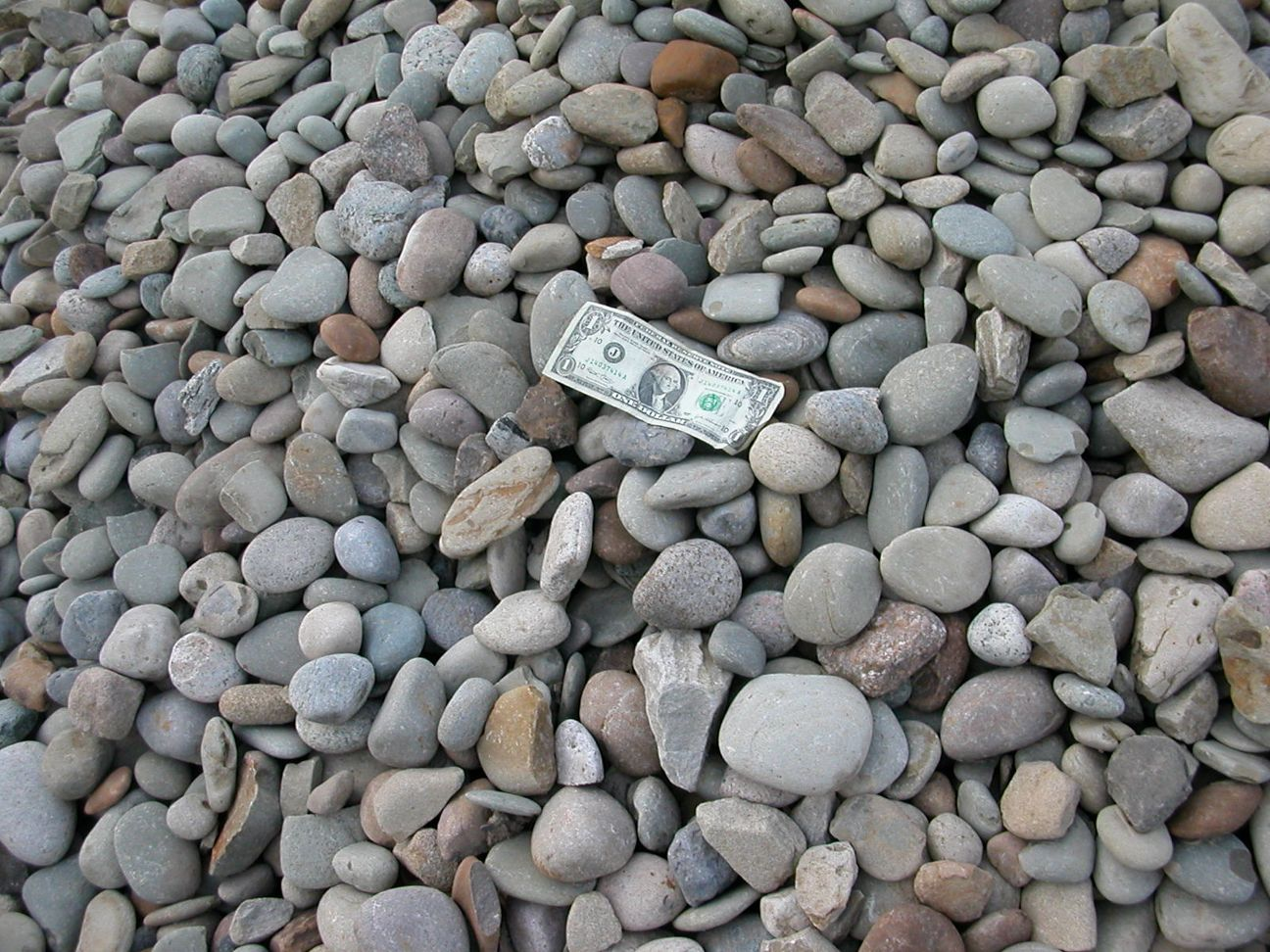 Decorative landscaping stone for White gravel landscaping