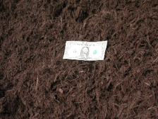 Dyed Brown Bark Mulch