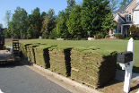 Sod by the square yard